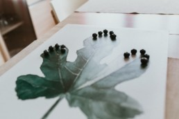 Confinement-montpellier-photographe-creativite