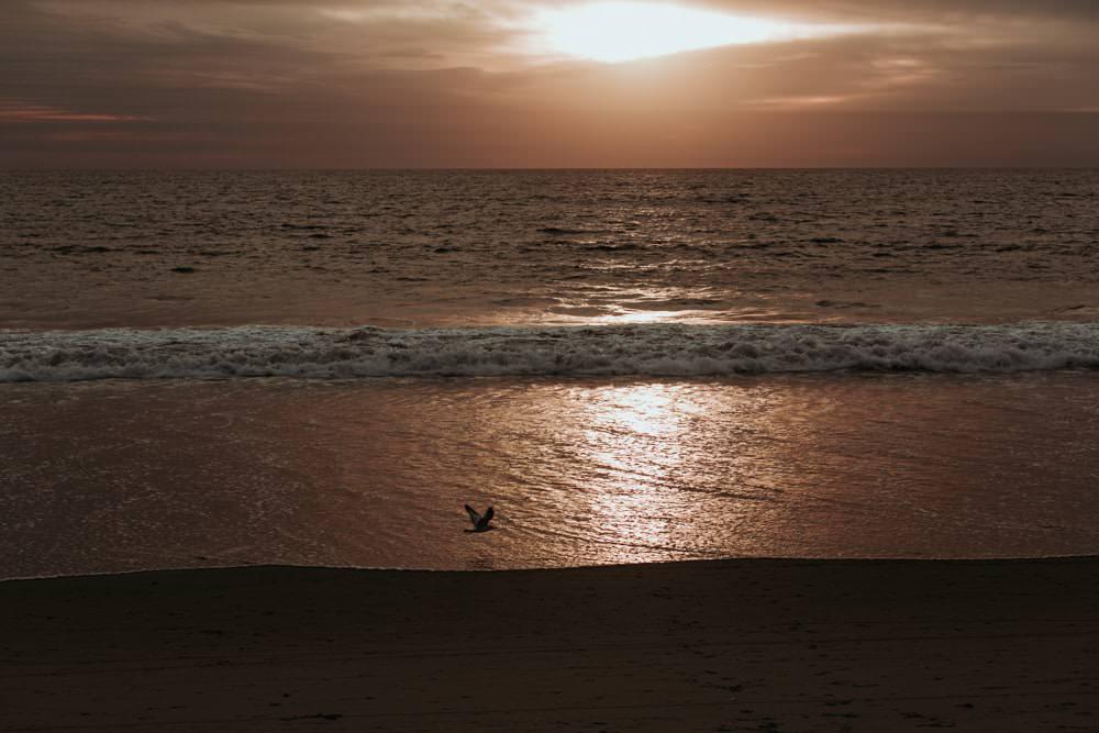 travel photographer coucher de soleil à Santa Monica