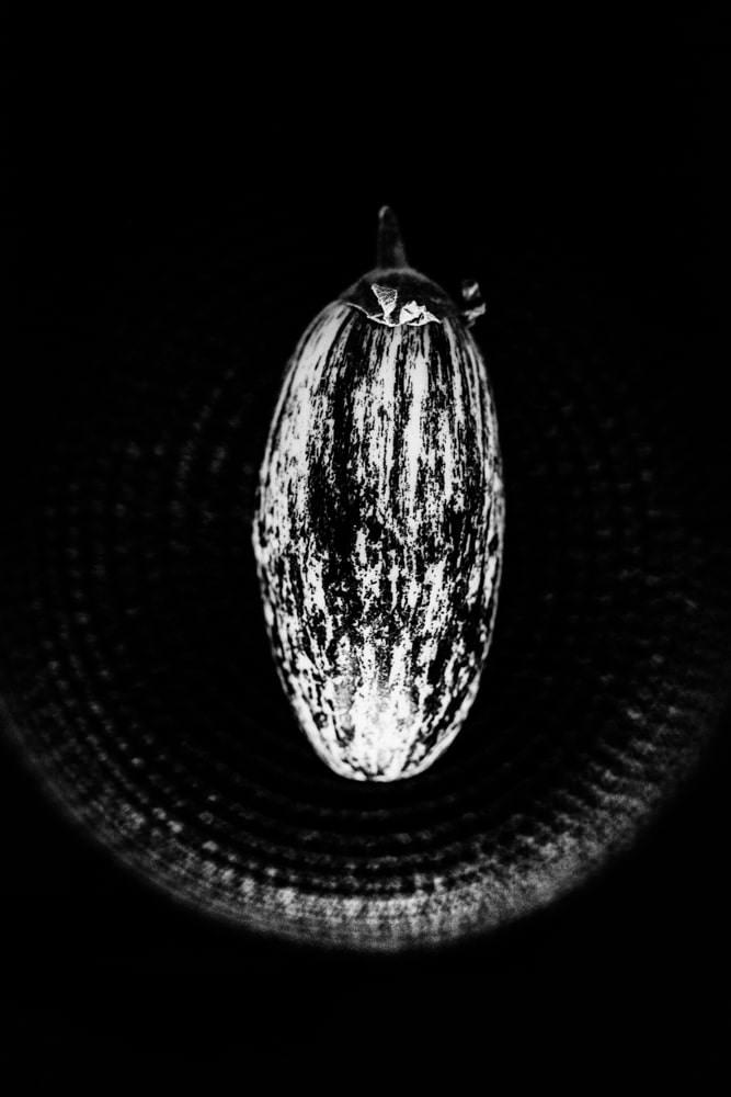 photo aubergine noir et blanc
