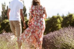 couple qui marche dans les allées d'un champ de lavande à côté d'Avignon. Abeilles qui volent, coucher de soleil