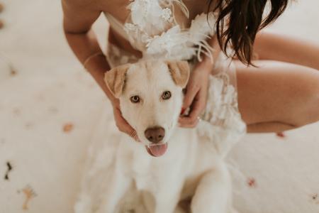 Photographe de mariage Lattes